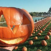 Halloween: pourquoi les citrouilles en sont-elles devenues le symbole?
