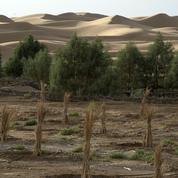 Climat : les défis de la COP 22 qui s'ouvre ce lundi