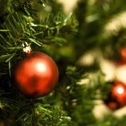 Et pourquoi ne pas louer votre sapin de Noël?