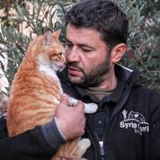 Sous les bombes d'Alep, il prend soin des chats orphelins