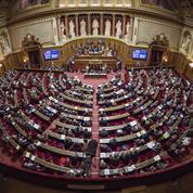 Le Sénat adopte l'extension du délit d'entrave à l'IVG