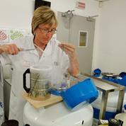 Conservation des ovocytes: le «oui mais…» des femmes