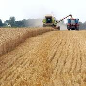 L'urbanisation des terres agricoles en nette diminution en France