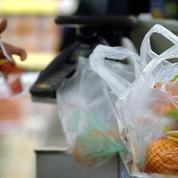 «Les sacs en plastique sont interdits? Ce que j'achète va dans mon panier en osier!»