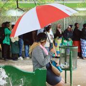 Le nouveau dollar du Zimbabwe, comme talisman face à la crise