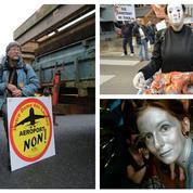Défense de l'environnement: la violence pour mieux se faire entendre ?