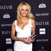 Rémi Gaillard veut enfermer Pamela Anderson dans une cage
