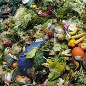 Comment une loi a réussi à réduire le gaspillage alimentaire en France