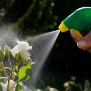 Jardin: les pesticides «chimiques» interdits dans 2 ans