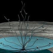Vitae ,découvrez la sculpture lunaire que l'on observera depuis la Terre