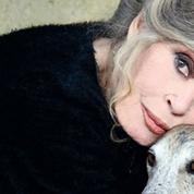Bardot condamne l'inaction des politiques face à la maltraitance animale