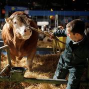 Les agriculteurs désabusés s'invitent dans la présidentielle