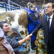 Le Salon de l'Agriculture, «défilé» incontournable des présidents de la République