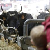 Salon de l'agriculture : «en Europe, nous laissons crever nos campagnes…»