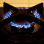 Record de consommation de gaz cet hiver en France
