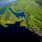 Le bassin du Congo se mobilise pour préserver son poumon écologique