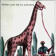 Biographies animales ,d'Éric Baratay: hommes de plume et bêtes à poil