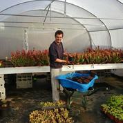 Autiste et entrepreneur : sa passion pour l'horticulture le fait vivre