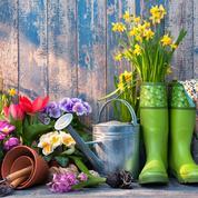 C'est le printemps: faites partir votre jardin du bon pied !