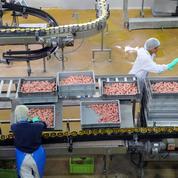 En 2016, les ouvertures d'usines ont compensé les fermetures