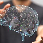 Luc Ferry: «Que faire face à l'intelligence artificielle?»