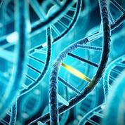 Demain, des humains génétiquement modifiés?