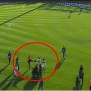 Bastia-Lyon : un stadier qui a agressé les Lyonnais bientôt licencié