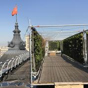 Le BHV transforme son toit en jardin