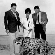 Souvenir cannois du Figaro : en 1963, un guépard arpente la Croisette