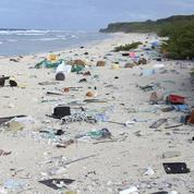 Une île déserte du Pacifique Sud abrite 38 millions de déchets plastiques
