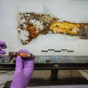 La science dévoile les trésors cachés de la tombe du prince celte de Lavau