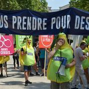 Déguisés en poires pour protester contre la baisse des aides à la PAC