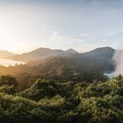 Des religieux lancent un appel pour la forêt tropicale
