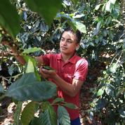 Au Honduras, entreprendre contre la pauvreté