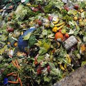 Suez crée un site d'enchères pour les déchets verts
