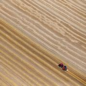 Après la canicule, les agriculteurs constatent les premiers dégâts