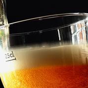 La Mairie de Paris moissonne pour produire sa propre bière