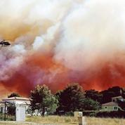 En France, 9 feux de forêt sur 10 sont causés par l'homme