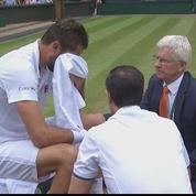 Wimbledon : les larmes de Marin Cilic durant sa finale contre Federer