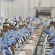 La chute de JBS, géant de la viande, ébranle le modèle brésilien des fleurons nationaux