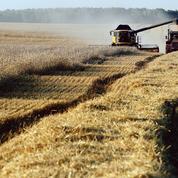 Les sanctions de Poutine qui ont stimulé l'agriculture russe