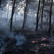 Soupçonné d'avoir volontairement provoqué 16 incendies dans le Sud, un homme en garde à vue