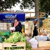 À Paris, un marché éphémère pour promouvoir l'agriculture de proximité