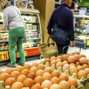 Oeufs contaminés: les ventes en grandes surfaces fortement pénalisées par le scandale
