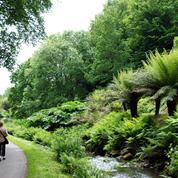 Journées du patrimoine: neuf jardins d'exception à découvrir