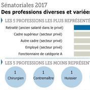 Âge, sexe, profession : radiographie des candidats aux sénatoriales