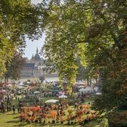 Journées des plantes: l'automne en Technicolor de Chantilly