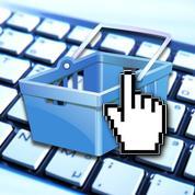 Les achats entre particuliers progressent toujours sur Internet