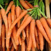 La chaîne Bio c'Bon mise en cause pour des pesticides dans ses carottes bio