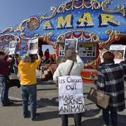 Les cirques avec animaux sauvages prohibés à Bastia